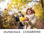 senior couple on a walk in a... | Shutterstock . vector #1156685440