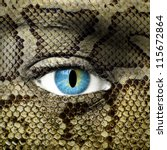 human face with snake skin... | Shutterstock . vector #115672864