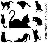 Stock photo silhouette cats in black for illustration 1156737829