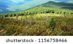landscape of gaspesie national... | Shutterstock . vector #1156758466