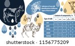 example of page design of a...   Shutterstock .eps vector #1156775209