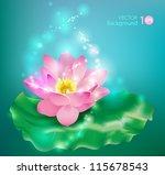 flower lotus. floral background.... | Shutterstock .eps vector #115678543