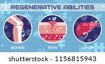 regenerative medicine  vector... | Shutterstock .eps vector #1156815943
