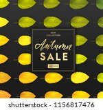trendy and elegant autumn... | Shutterstock .eps vector #1156817476