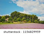 a house in the fields of... | Shutterstock . vector #1156829959
