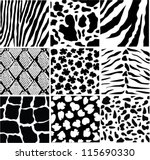 Vector Black And White Skin Of...