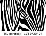 Zebra Stripes Seamless Pattern. ...