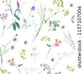 watercolor summer wildflowers... | Shutterstock . vector #1157107006