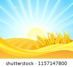 vector cartoon drawing of wheat ... | Shutterstock .eps vector #1157147800