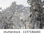snowcowered branches. winter... | Shutterstock . vector #1157186683