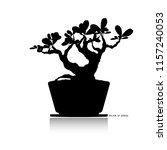 japanese bonsai tree  plant... | Shutterstock .eps vector #1157240053