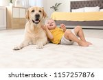 adorable yellow labrador... | Shutterstock . vector #1157257876