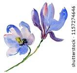 blue watercolor magnolia... | Shutterstock . vector #1157274646