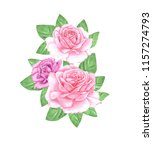 watercolor rose flowers.... | Shutterstock . vector #1157274793
