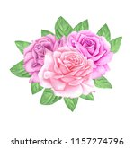 watercolor rose flowers ... | Shutterstock . vector #1157274796