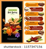 spice shop poster of hot...   Shutterstock .eps vector #1157347156
