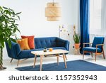 armchair and sofa in blue and... | Shutterstock . vector #1157352943