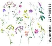 watercolor summer set of... | Shutterstock . vector #1157405953