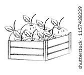 grunge delicious oranges fruits ... | Shutterstock .eps vector #1157438239