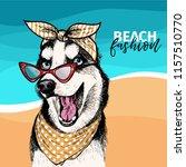 portrait of siberian husky dog ...   Shutterstock . vector #1157510770