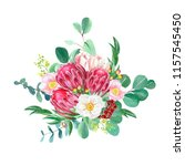 hand painted watercolor proteas ... | Shutterstock . vector #1157545450