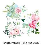 pink protea  ranunculus  rose ... | Shutterstock .eps vector #1157557039