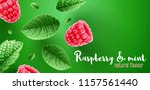 red raspberry berries. green... | Shutterstock .eps vector #1157561440