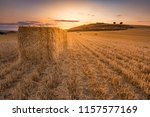 Bundles of straw in a dry field during the summer of Castilla in Spain