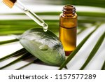 essential oil dripping on the... | Shutterstock . vector #1157577289