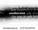 undersea word in a dictionary.... | Shutterstock . vector #1157614576