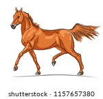 an illustration of a trotting... | Shutterstock .eps vector #1157657380