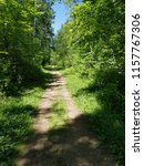 dirt path through forest trees... | Shutterstock . vector #1157767306