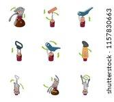 corkscrew icons set. isometric...   Shutterstock .eps vector #1157830663