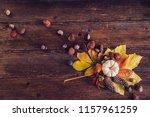 Autumn Still Life Arrangement...