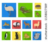 different animals flat icons in ... | Shutterstock .eps vector #1158027589