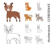 animals  domestic  wild and... | Shutterstock .eps vector #1158030643