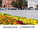 city square and flowers. orange ... | Shutterstock . vector #1158034150