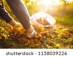 young boy cleans fallen leaves. ... | Shutterstock . vector #1158039226