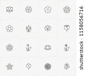 flowers line icon set with rose ... | Shutterstock .eps vector #1158056716