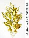 Fall Leaf Print On White Paper