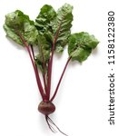 fresh beets with tops  isolated ... | Shutterstock . vector #1158122380