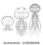 set of contour black and white... | Shutterstock .eps vector #1158186406