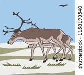 pair reindeers at tundra...   Shutterstock .eps vector #1158193540