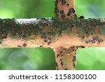 a vintage cross of a rusty iron ... | Shutterstock . vector #1158300100