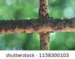 a vintage cross of a rusty iron ... | Shutterstock . vector #1158300103