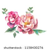 watercolor flowers. floral... | Shutterstock . vector #1158430276