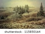 First snow in rural Alaska with a dusting of white on the spruce trees and brush processed with a texture layer for an artistic look. - stock photo