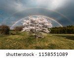 Incredible Double Rainbow In...