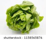 butter head lettuce  salad... | Shutterstock . vector #1158565876