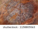 wood texture background   Shutterstock . vector #1158805063